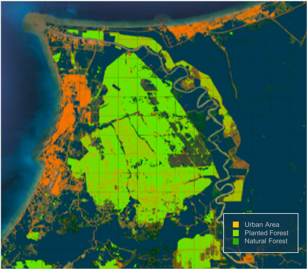 AI wykorzystuje się do kontrolowania nielegalnych wycinek drzew lasów deszczowych