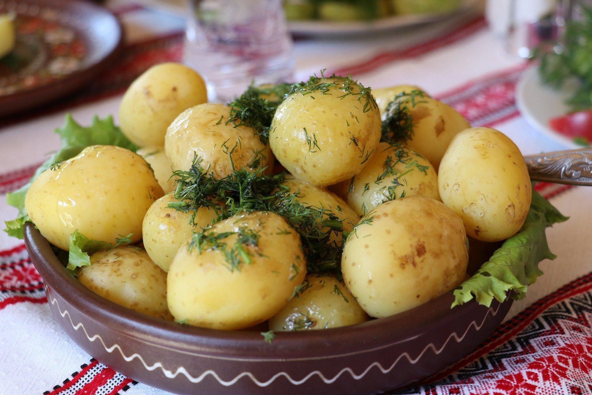 Microsoft dostarczy rozwiązania SI do ochrony polskich ziemniaków 9