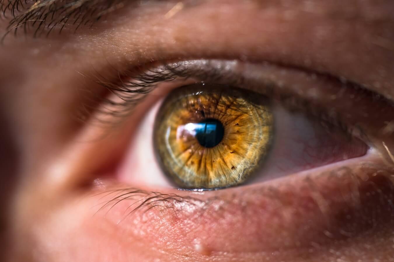 Sztuczne oko zastąpi w przyszłości ludzki wzrok?