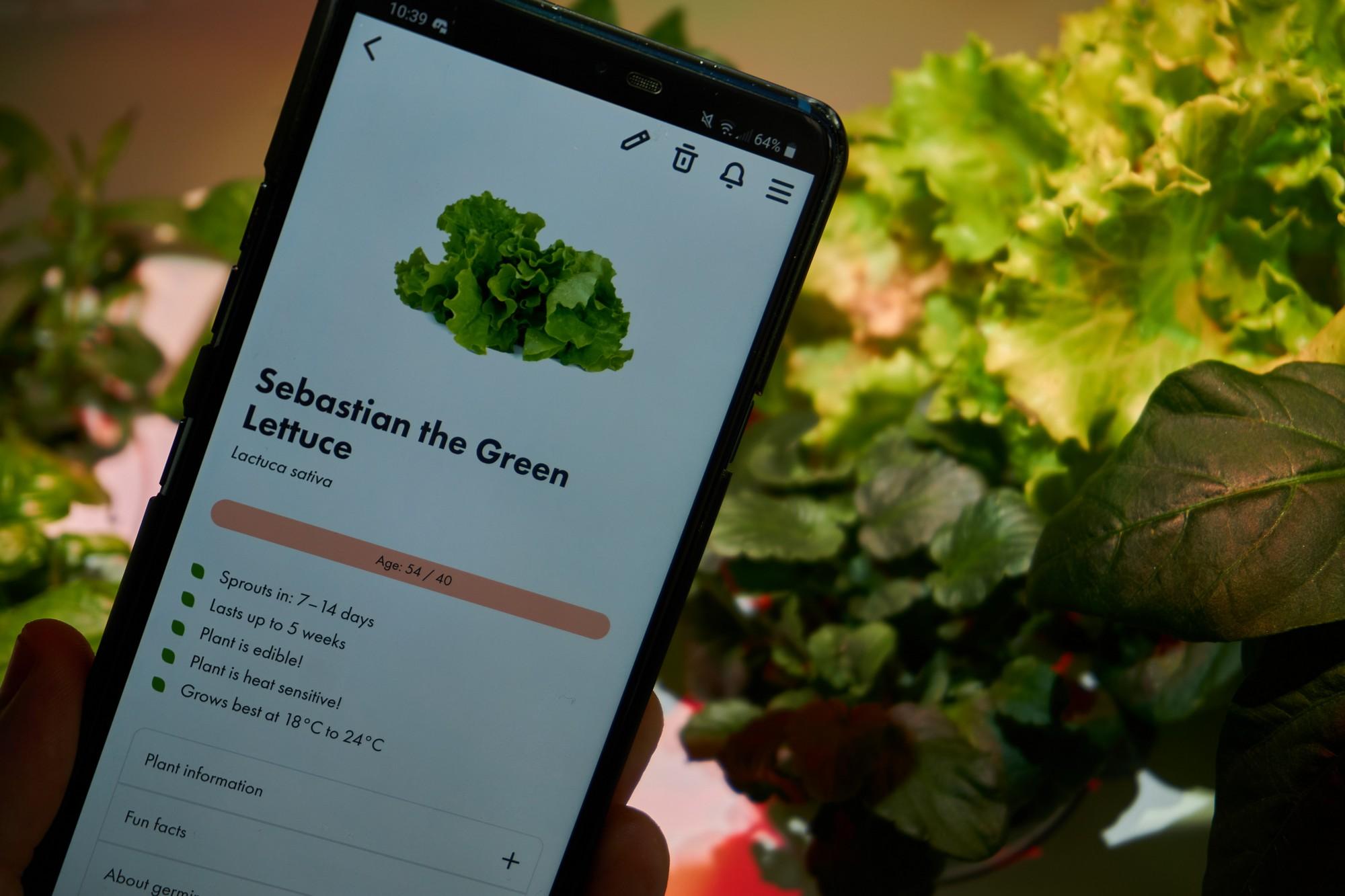 """Recenzja Smart Garden 3 oraz 9 - nie wszystko inteligentne, co ma """"smart"""" w nazwie"""