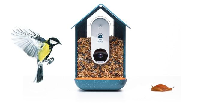 Bird Buddy pierwszym inteligentnym karmnikiem dla ptaków