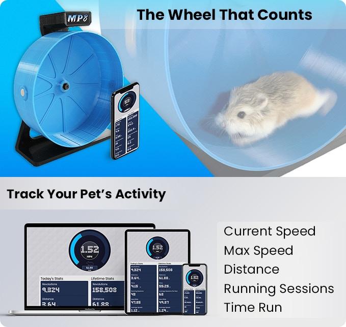 Smart Hamster Wheel to kółko dla chomików połączone z apką