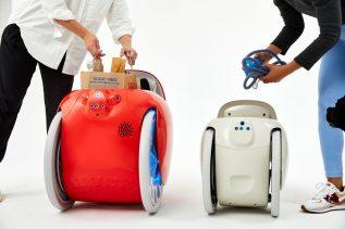 Robot Gitamini